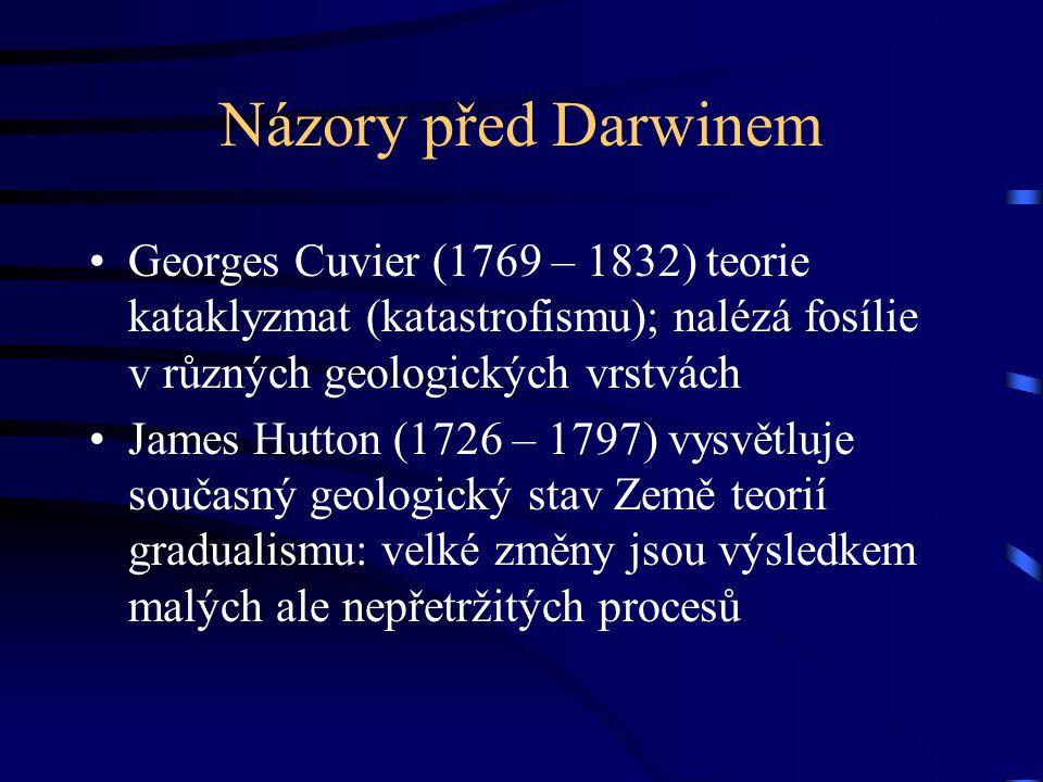 Názory před Darwinem Georges Cuvier (1769 – 1832) teorie kataklyzmat (katastrofismu); nalézá fosílie v různých geologických vrstvách.