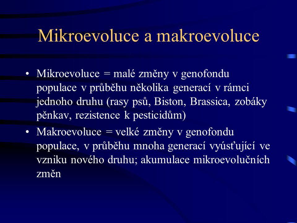 Mikroevoluce a makroevoluce