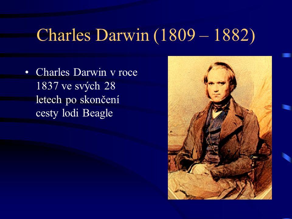 Charles Darwin (1809 – 1882) Charles Darwin v roce 1837 ve svých 28 letech po skončení cesty lodi Beagle.