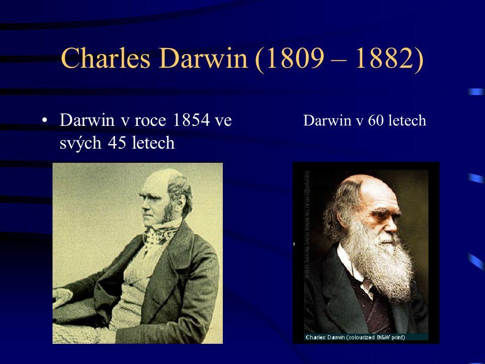 Charles Darwin (1809 – 1882) Darwin v roce 1854 ve svých 45 letech