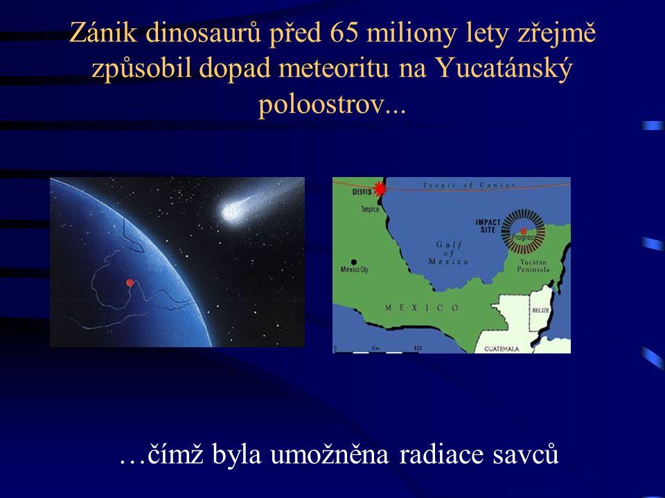 Zánik dinosaurů před 65 miliony lety zřejmě způsobil dopad meteoritu na Yucatánský poloostrov...