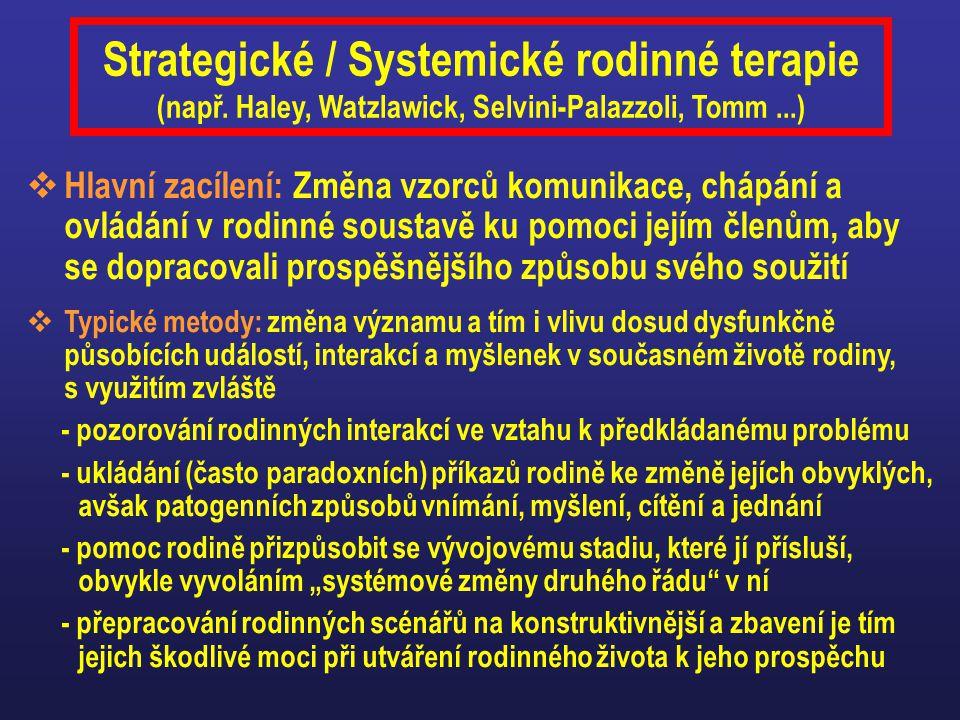 Strategické / Systemické rodinné terapie (např