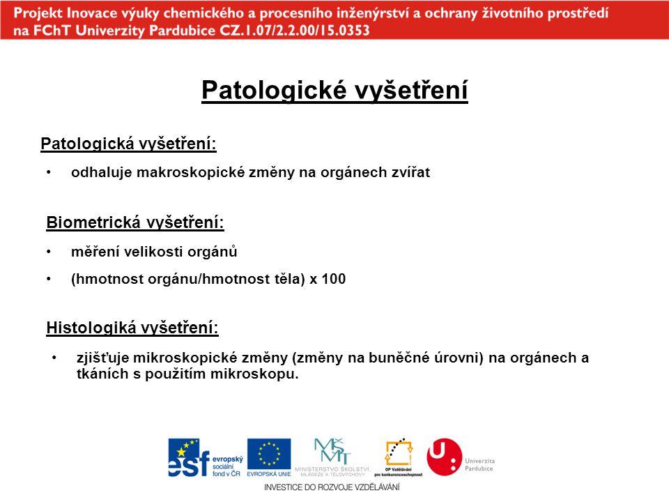 Patologické vyšetření
