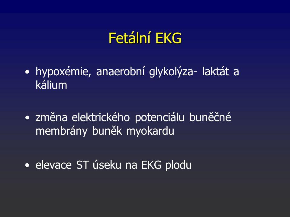 Fetální EKG hypoxémie, anaerobní glykolýza- laktát a kálium