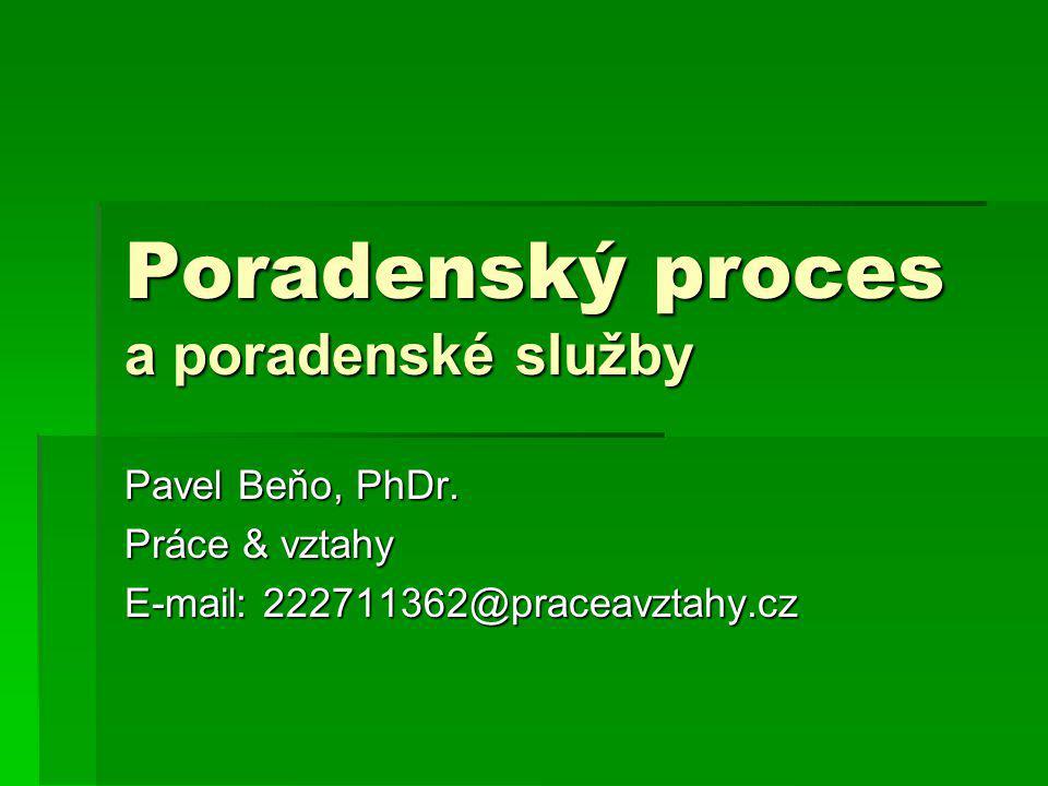 Poradenský proces a poradenské služby