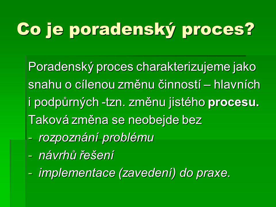 Co je poradenský proces