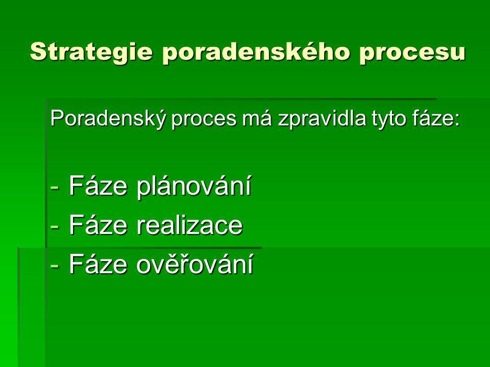 Strategie poradenského procesu