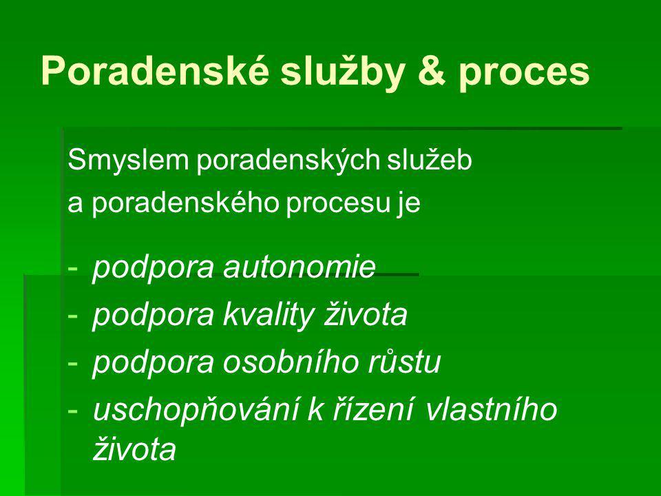 Poradenské služby & proces