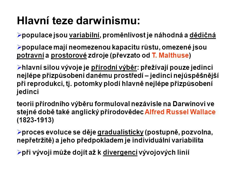 Hlavní teze darwinismu: