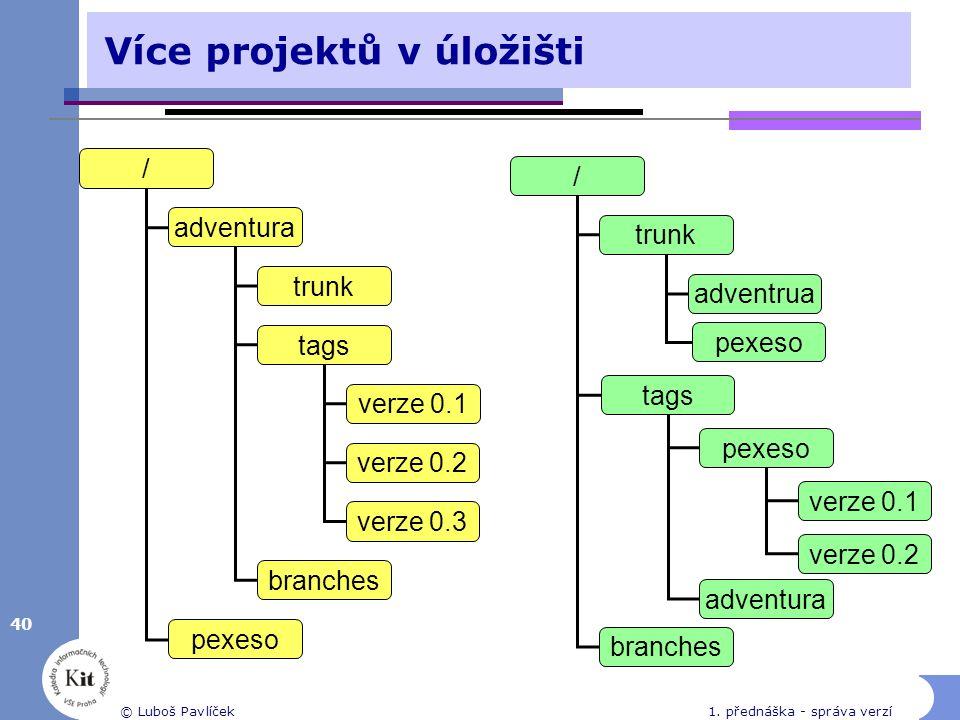 Více projektů v úložišti
