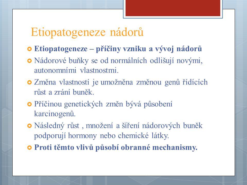 Etiopatogeneze nádorů