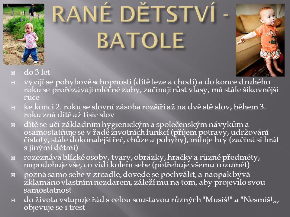 RANÉ DĚTSTVÍ - BATOLE do 3 let