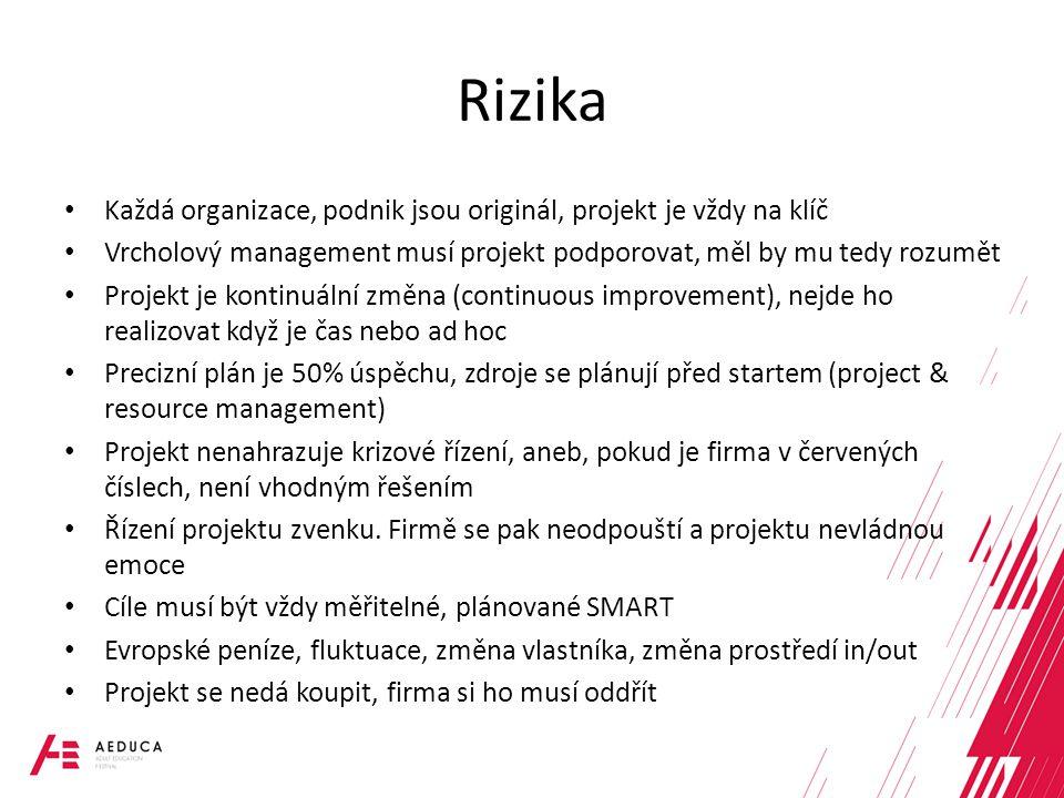 Rizika Každá organizace, podnik jsou originál, projekt je vždy na klíč