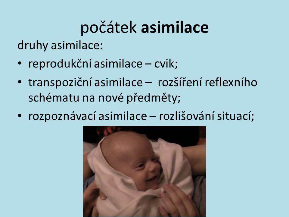 počátek asimilace druhy asimilace: reprodukční asimilace – cvik;