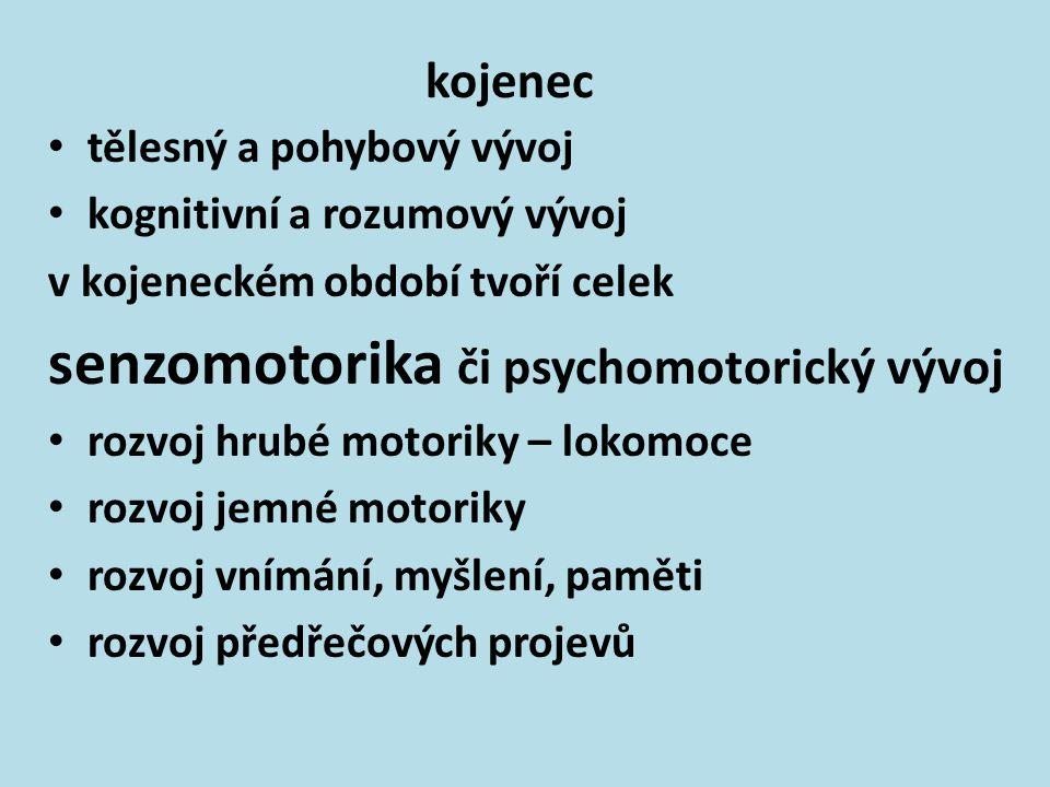 senzomotorika či psychomotorický vývoj
