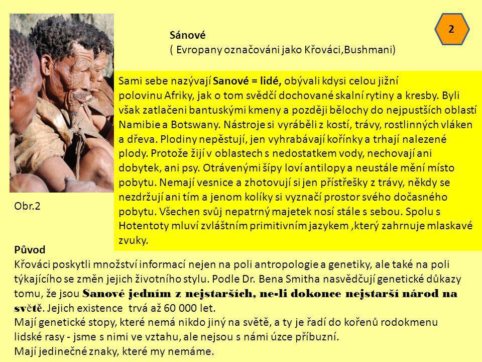 2 Sánové. ( Evropany označováni jako Křováci,Bushmani)