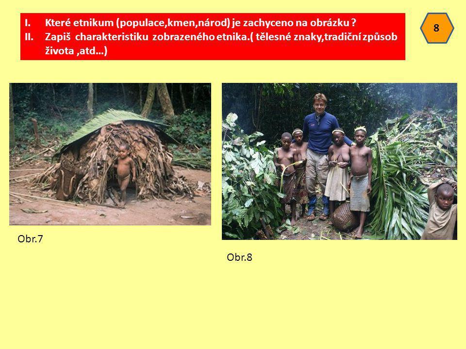 Které etnikum (populace,kmen,národ) je zachyceno na obrázku