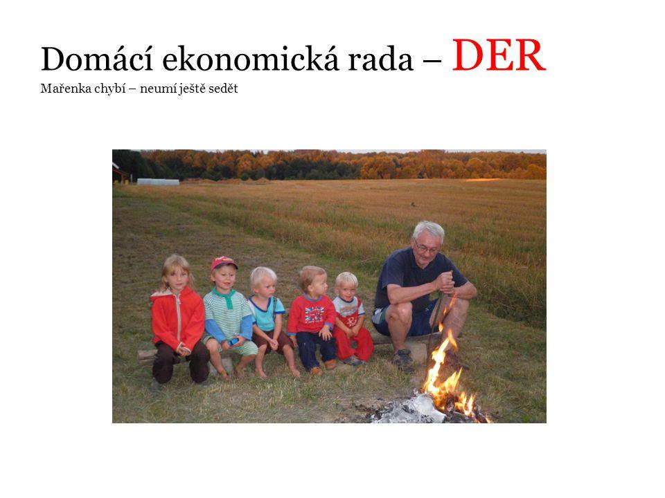 Domácí ekonomická rada – DER Mařenka chybí – neumí ještě sedět