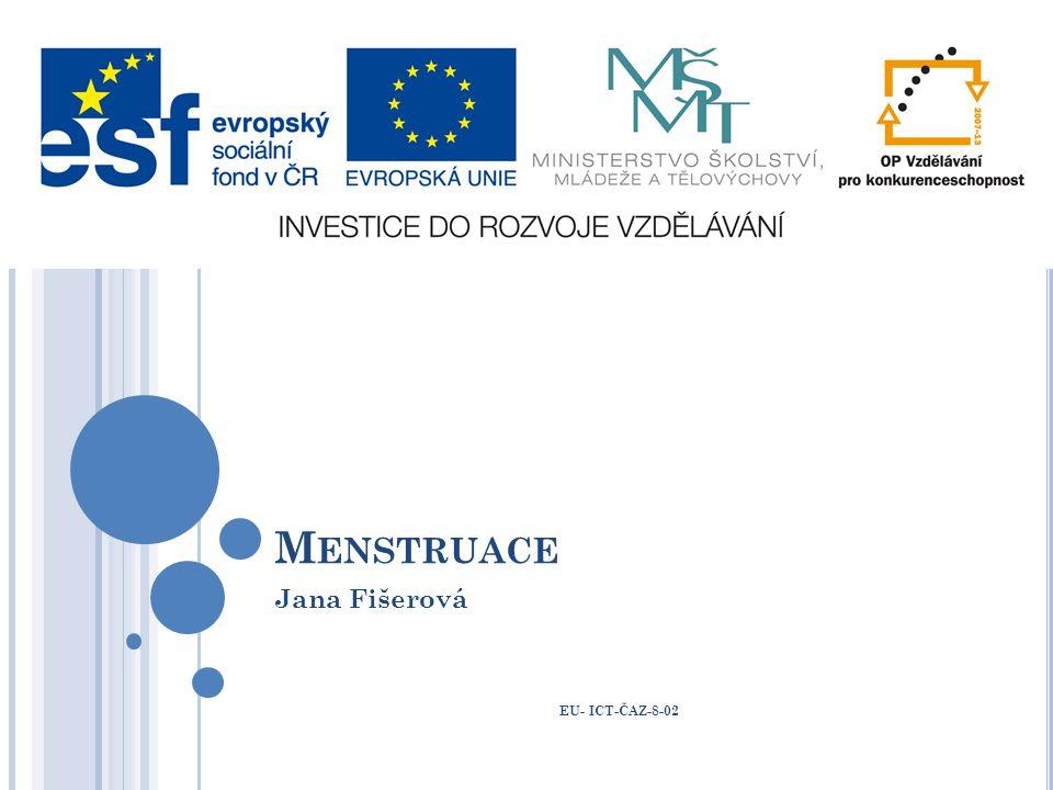 Jana Fišerová EU- ICT-ČAZ-8-02