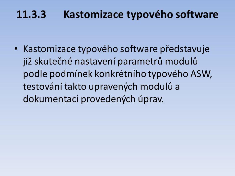 11.3.3 Kastomizace typového software