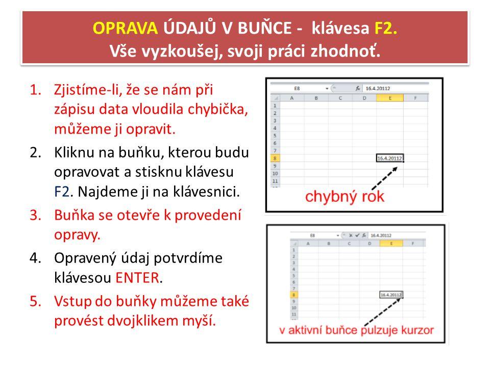 OPRAVA ÚDAJŮ V BUŇCE - klávesa F2. Vše vyzkoušej, svoji práci zhodnoť.