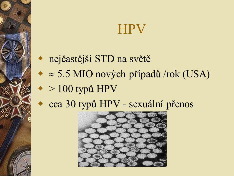 HPV nejčastější STD na světě  5.5 MIO nových případů /rok (USA)