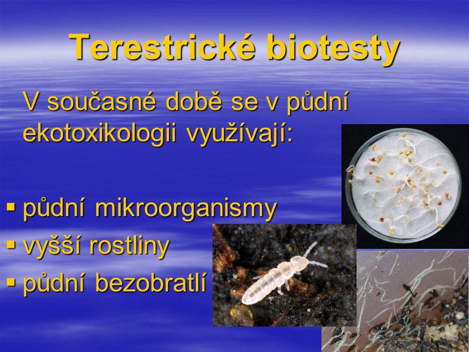 Terestrické biotesty půdní mikroorganismy vyšší rostliny