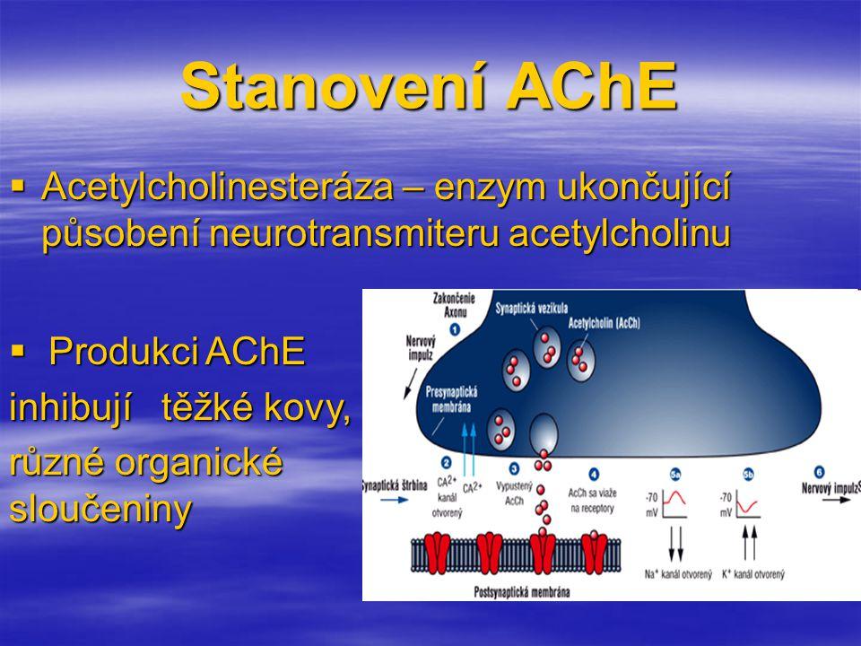 Stanovení AChE Acetylcholinesteráza – enzym ukončující působení neurotransmiteru acetylcholinu. Produkci AChE.