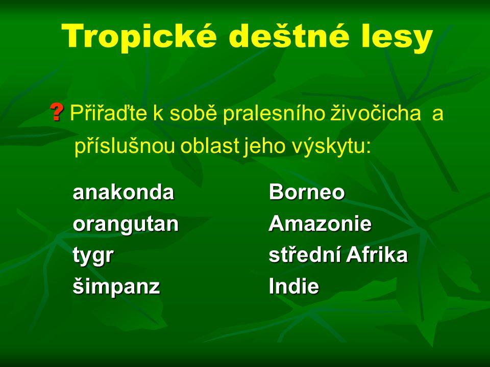 Tropické deštné lesy Přiřaďte k sobě pralesního živočicha a