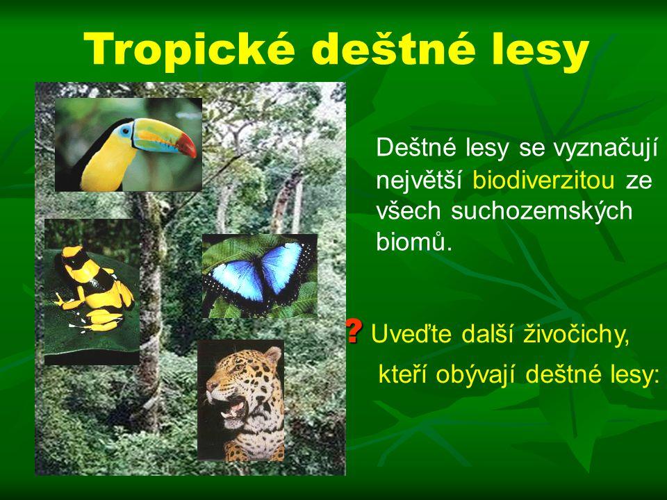 Tropické deštné lesy Deštné lesy se vyznačují největší biodiverzitou ze všech suchozemských biomů. Uveďte další živočichy,