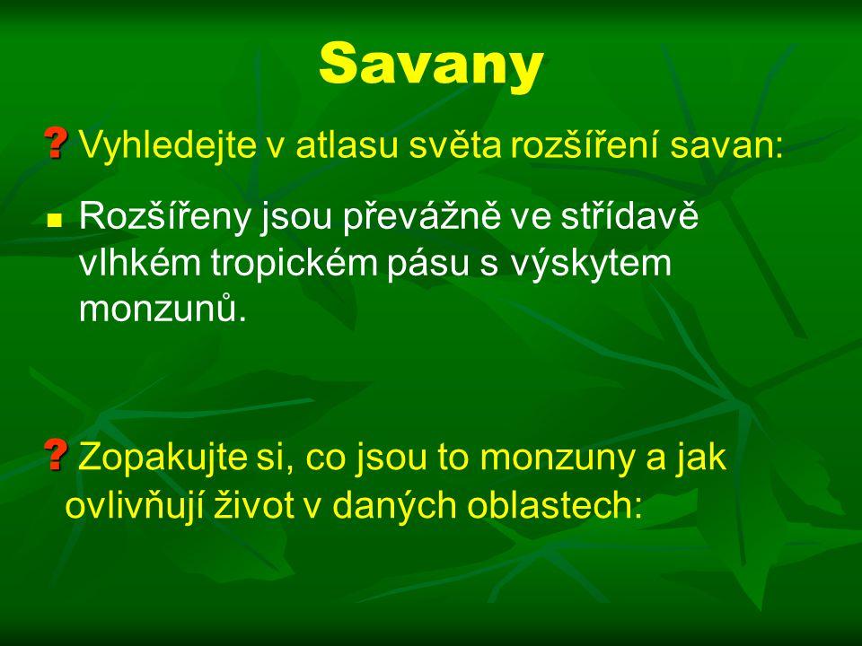 Savany Vyhledejte v atlasu světa rozšíření savan: