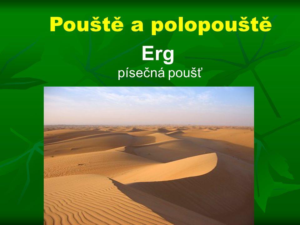 Pouště a polopouště Erg písečná poušť
