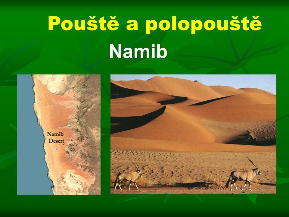 Pouště a polopouště Namib