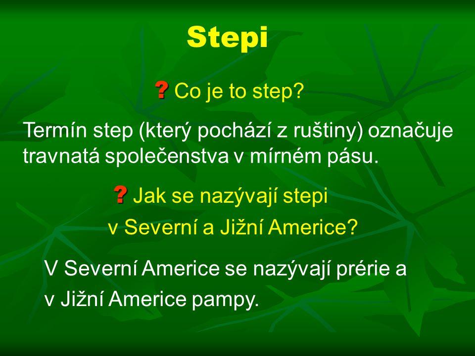 Stepi Co je to step Termín step (který pochází z ruštiny) označuje travnatá společenstva v mírném pásu.