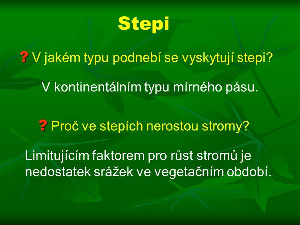 Stepi V jakém typu podnebí se vyskytují stepi