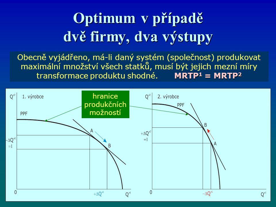 Optimum v případě dvě firmy, dva výstupy