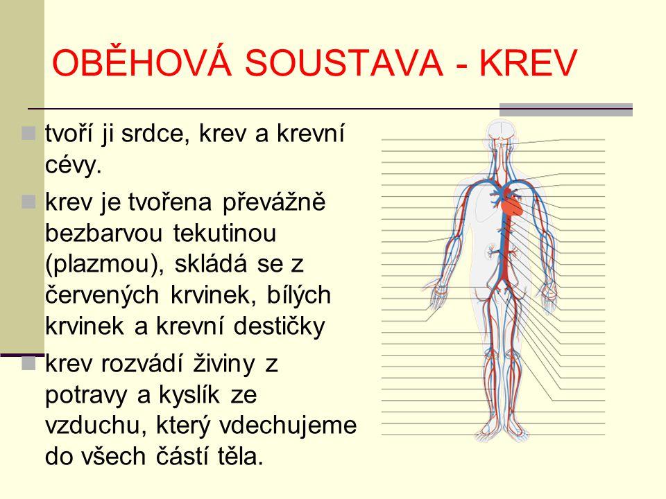 OBĚHOVÁ SOUSTAVA - KREV