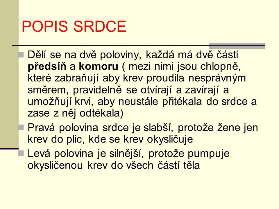 POPIS SRDCE