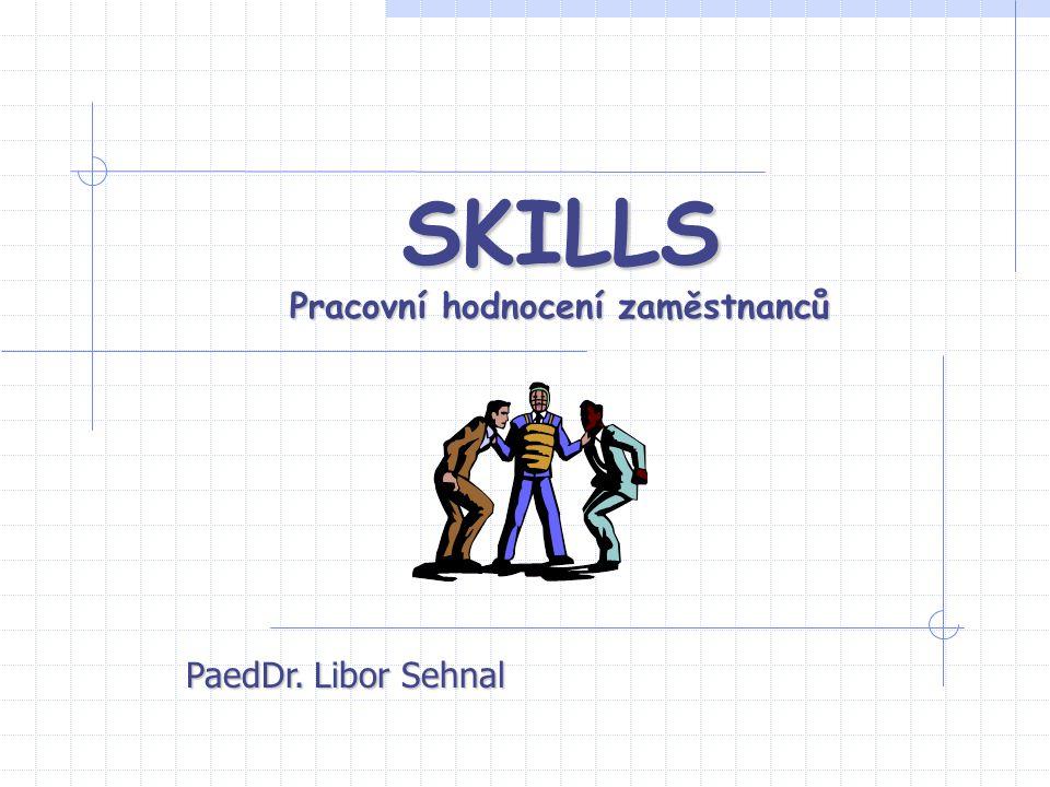 SKILLS Pracovní hodnocení zaměstnanců