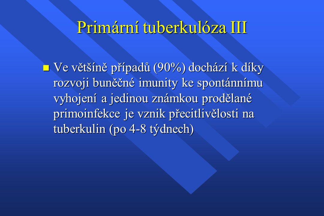 Primární tuberkulóza III