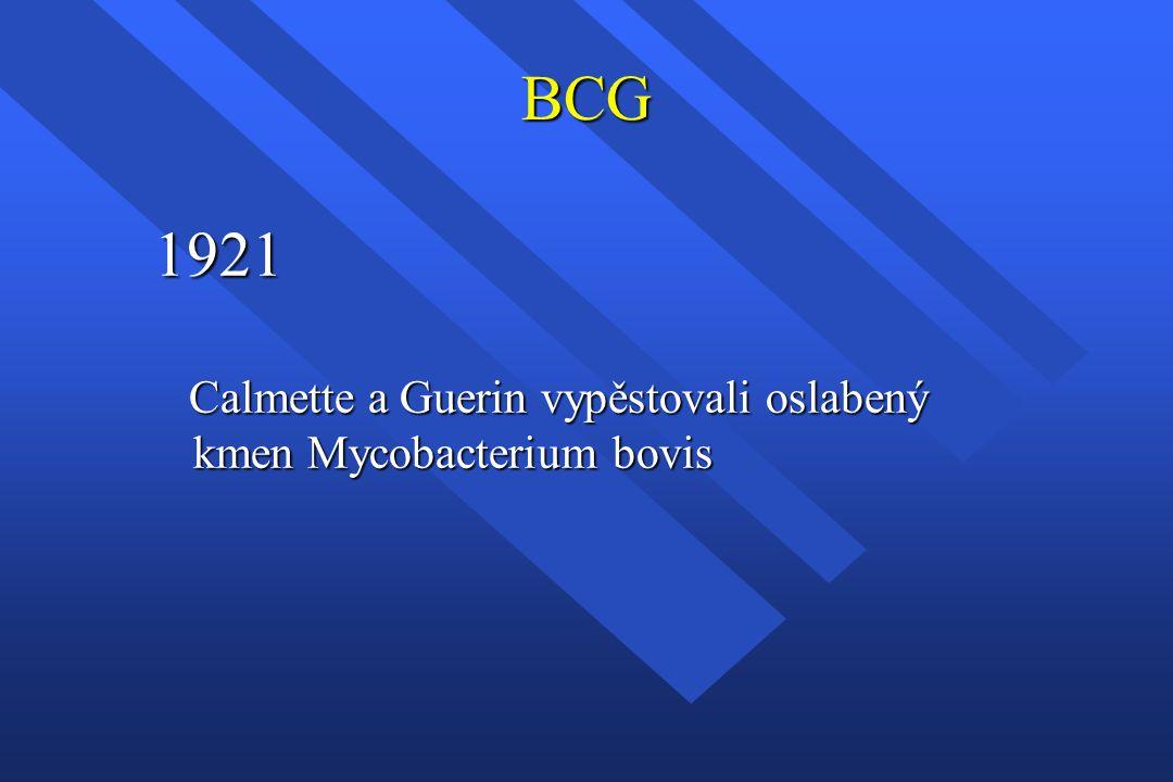 BCG 1921 Calmette a Guerin vypěstovali oslabený kmen Mycobacterium bovis