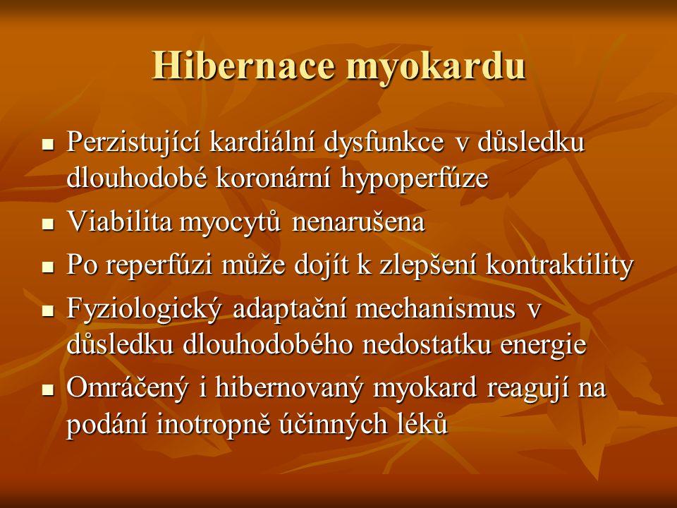 Hibernace myokardu Perzistující kardiální dysfunkce v důsledku dlouhodobé koronární hypoperfúze. Viabilita myocytů nenarušena.
