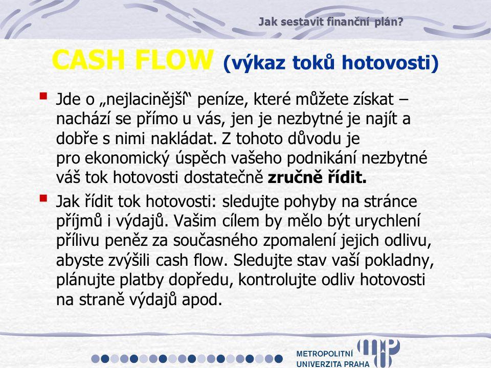 CASH FLOW (výkaz toků hotovosti)