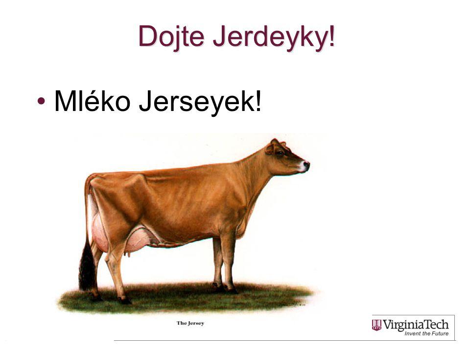 Dojte Jerdeyky! Mléko Jerseyek!
