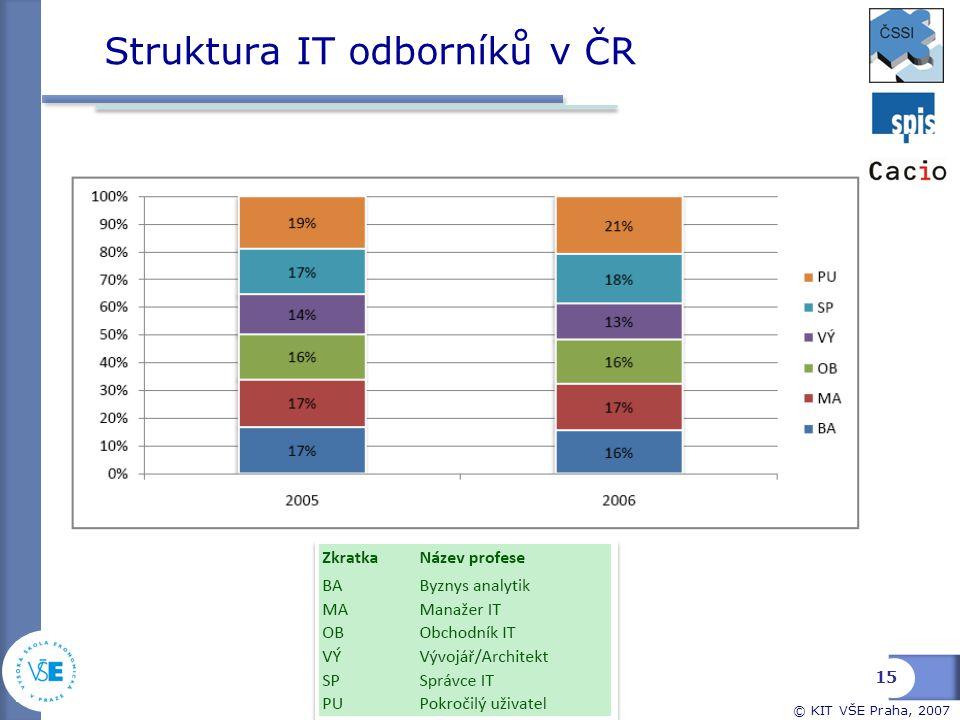 Struktura IT odborníků v ČR