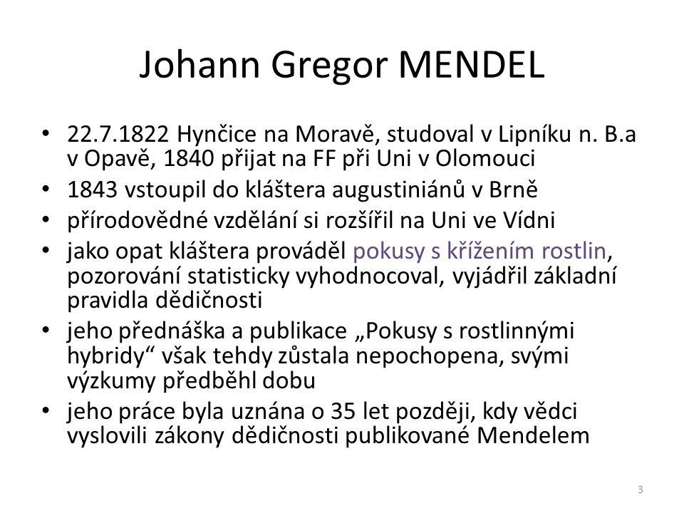 Johann Gregor MENDEL 22.7.1822 Hynčice na Moravě, studoval v Lipníku n. B.a v Opavě, 1840 přijat na FF při Uni v Olomouci.