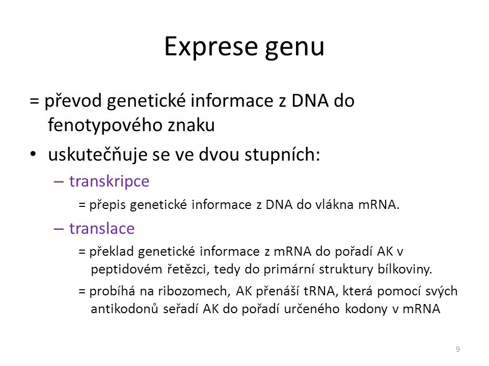 Exprese genu = převod genetické informace z DNA do fenotypového znaku