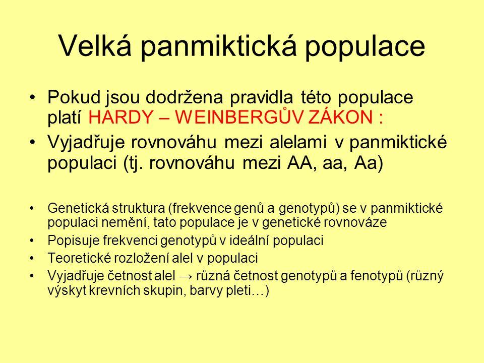Velká panmiktická populace