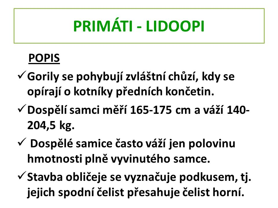PRIMÁTI - LIDOOPI POPIS