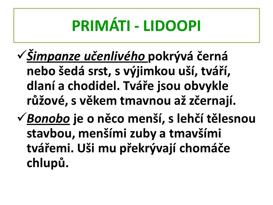PRIMÁTI - LIDOOPI
